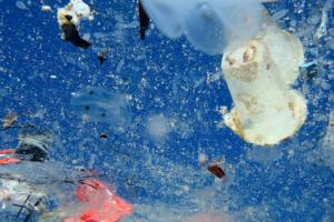 Behind the Scenes - A Plastic Ocean